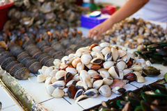 Overzeese tweekleppige schelpdieren op traditionele zeevruchtenmarkt Royalty-vrije Stock Fotografie