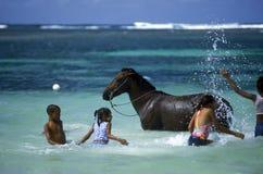 OVERZEESE VAN AMERIKA CARIBBIAN DOMINICAANSE REPUBLIEK royalty-vrije stock foto