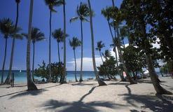 OVERZEESE VAN AMERIKA CARIBBIAN DOMINICAANSE REPUBLIEK Stock Afbeeldingen