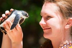 Overzeese van de baby schildpad Stock Foto