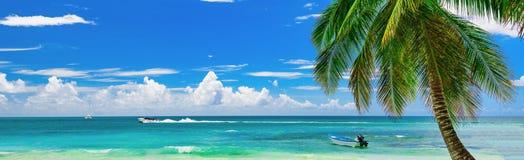 Overzeese van het bootstrand het Caraïbische eiland Saona van de Dominicaanse republiek Stock Foto's