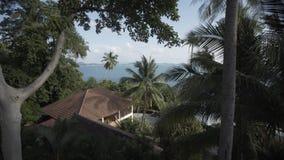 Overzeese van Timelapsethailand islalnd strandhuizen, de wilde boom van de bergenaard en palm stock footage