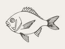 Overzeese vissen Royalty-vrije Stock Foto's
