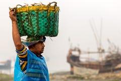 Overzeese vissen stock foto's