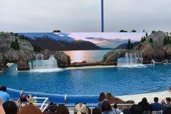 Overzeese Wereld Oceaanontdekkingsreizigers Royalty-vrije Stock Afbeeldingen