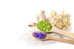Overzeese zout en zeeschelpen Stock Afbeelding