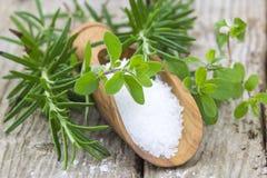 Overzeese zoute en verse kruiden Stock Afbeelding