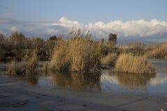 Overzicht van de zoute pannen van Quartu - Molentargius - Sardinige Stock Foto