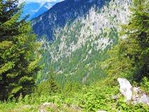Overzicht van de Zuiden Tiroolse bergen Stock Afbeelding