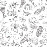 Overzichtshand getrokken plantaardig patroon (vlakke stijl, dunne lijn) Royalty-vrije Stock Afbeelding