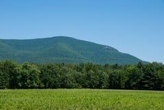 Overzie Berg van Zena Cornfield Stock Fotografie
