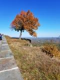 Overzie van Thatcher State Park, Albany, NY, in de herfst Stock Fotografie