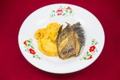 Ovo batido fritado com pectoralis de Fried Trichogaster Foto de Stock Royalty Free