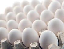 Ovo branco da galinha em uma caixa da bandeja ou da caixa da gaveta Imagens de Stock