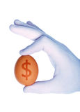 Ovo com símbolo do dólar Foto de Stock Royalty Free
