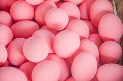 Ovo cor-de-rosa Fotografia de Stock