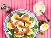 Ovo cozido e salada friável do bacon com agrião Fotos de Stock