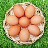 Ovo da galinha de Brown em uma cesta de vime Fotos de Stock Royalty Free