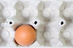 Ovo da galinha na caixa de papel fotos de stock