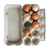 Ovo da galinha na caixa isolada no branco Imagem de Stock