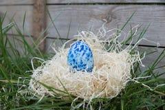 Ovo da páscoa azul em um esconderijo Imagem de Stock