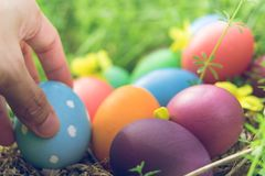 Ovo da páscoa! fundos coloridos felizes do conceito da Páscoa das decorações do feriado da caça do Domingo de Páscoa com espaço d Foto de Stock Royalty Free