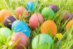 Ovo da páscoa! fundos coloridos felizes do conceito da Páscoa das decorações do feriado da caça do Domingo de Páscoa com espaço d Imagens de Stock