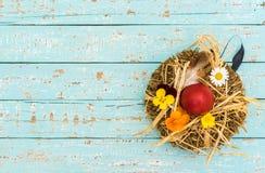 Ovo da páscoa no ninho com palha e flores na luz - tabela de madeira azul, vista superior Fotos de Stock