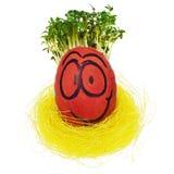 Ovo da páscoa pintado em uma cara engraçada do smiley e em uns testes padrões coloridos Fotos de Stock