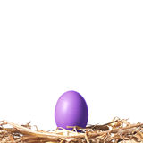 Ovo da páscoa violeta em um ninho da palha Fotos de Stock