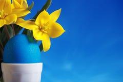 Ovo de easter azul e tulips amarelos Fotografia de Stock Royalty Free