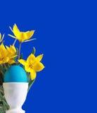 Ovo de easter azul e tulips amarelos Imagens de Stock