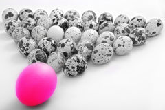 Ovo de easter colorido e ovos de codorniz preto e branco Foto de Stock