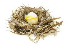 Ovo de Easter decorado no ninho Fotografia de Stock Royalty Free