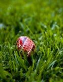 Ovo de Easter hand-painted brilhante Imagens de Stock