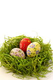 Ovo de Easter no fundo da grama verde Foto de Stock