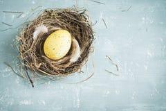 Ovo de Easter no ninho Imagem de Stock
