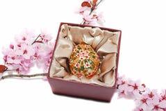 Ovo de Easter para o jewelery na caixa. foto de stock royalty free