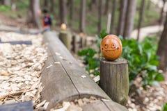 Ovo de madeira da pintura na floresta Imagens de Stock