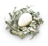 Ovo de ninho das economias do dinheiro Fotografia de Stock