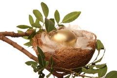 Ovo de ninho dourado Imagem de Stock Royalty Free