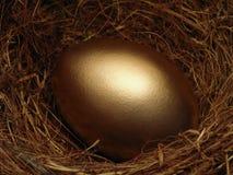 Ovo de ninho dourado Imagens de Stock