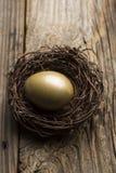 Ovo de ninho financeiro e planeamento adicional de construção do riqueza e o financeiro Imagens de Stock Royalty Free