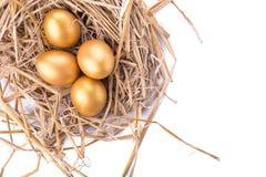 Ovo dourado dentro de um ninho isolado no fundo branco Imagens de Stock