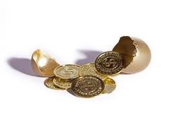 Ovo dourado do sucesso Foto de Stock Royalty Free