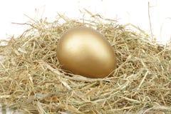 Ovo dourado na palha Fotografia de Stock Royalty Free
