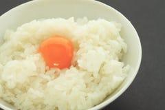 Ovo e arroz na bacia Fotos de Stock