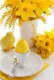Ovo e flores de Easter foto de stock royalty free
