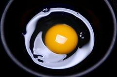 Ovo e yolk foto de stock royalty free