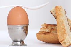 Ovo em uma taça para ovo Foto de Stock